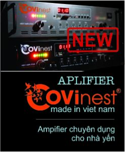 Amply-covinest